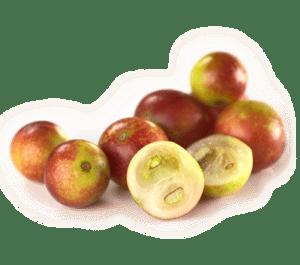 Superfood met enorme hoeveelheid vitamine C; camu camu bes