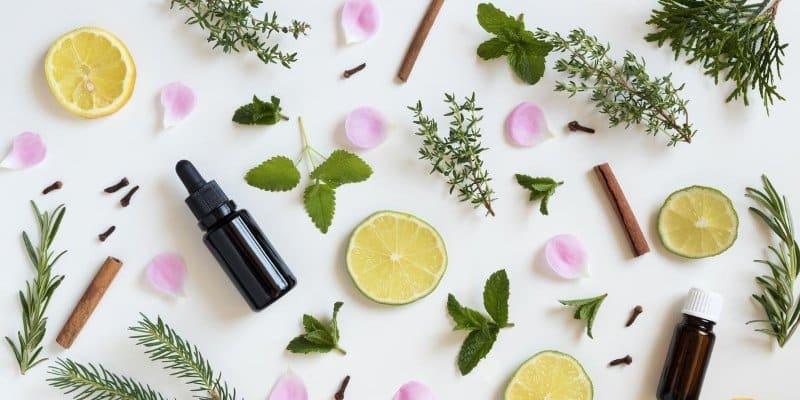 Bloemen, kruiden en fruit voor aroma therapie