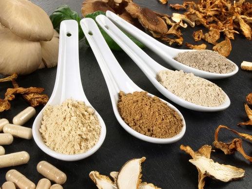 Voedingswaarde van paddenstoelen