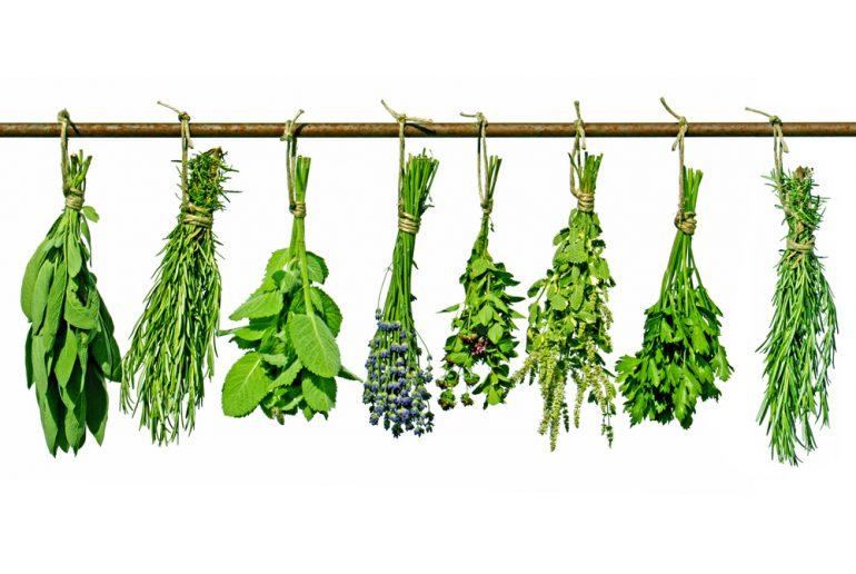 Fytotherapeutische supplementen
