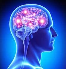 Onderhoud voor je hersenen