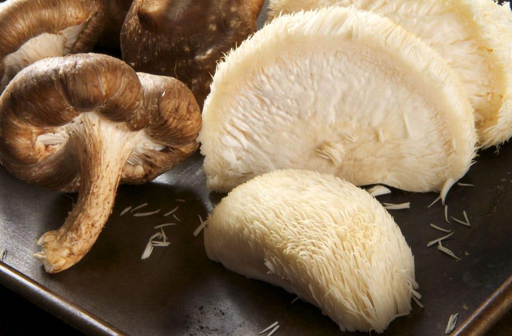 Mushrooms recepten